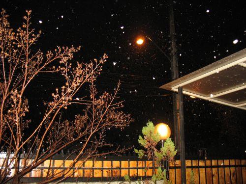 Nieve en Ñuñork 1